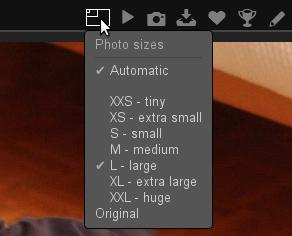 Le plugin Automatic Size ajoute une option dans la liste des tailles disponibles.